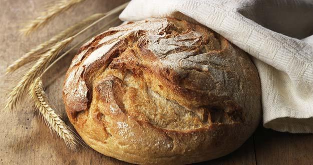 pan de trigo transgénico Dieta Luzón